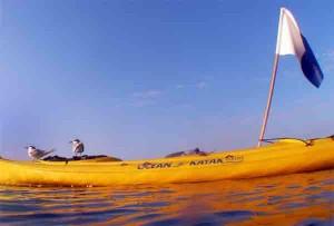 קיאק לפעילות דייג בצלילה חופשית בים