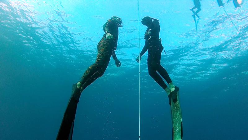 קורסי צלילה חופשית