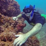 avidag free dive course 1
