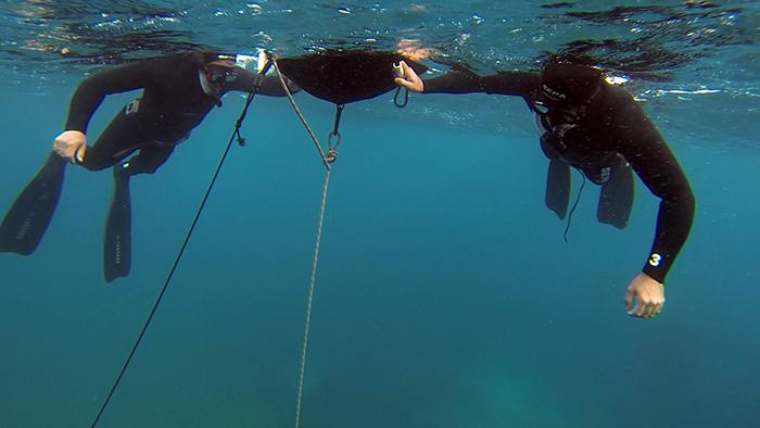 avidag freedive 1 25-1-2014