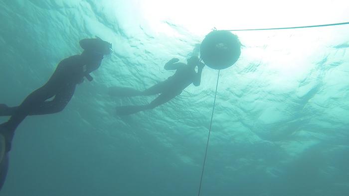 avidag freedive 10 26-1-2014