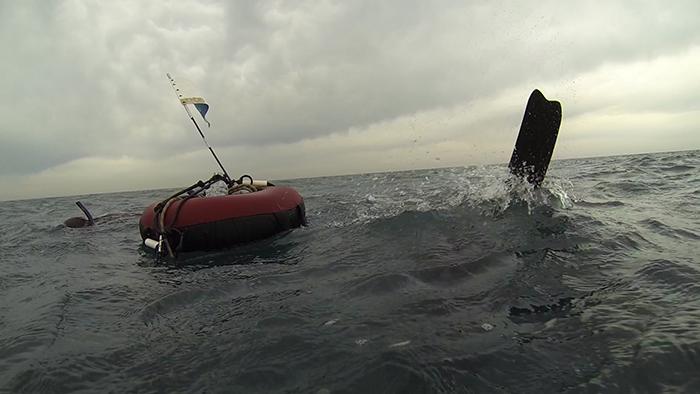 avidag freedive 13 26-1-2014