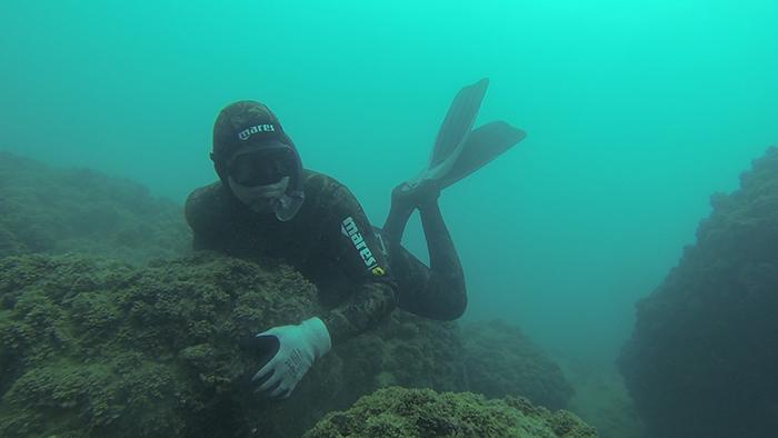 avidag freedive 2 26-1-2014