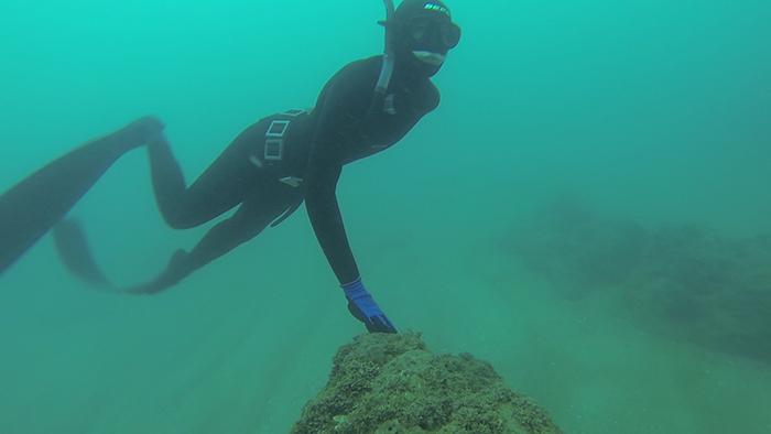 avidag freedive 4 26-1-2014