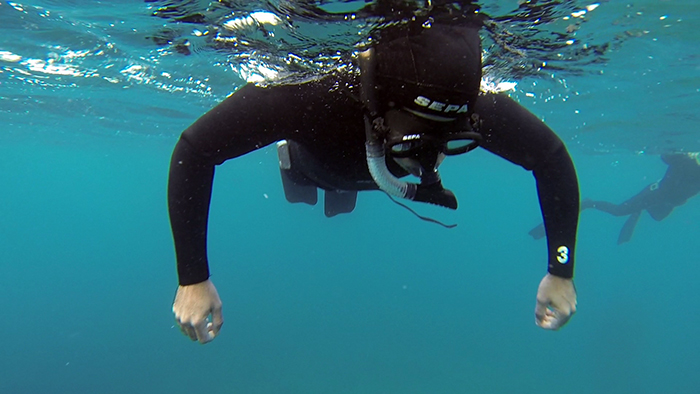 avidag freedive 5 25-1-2014