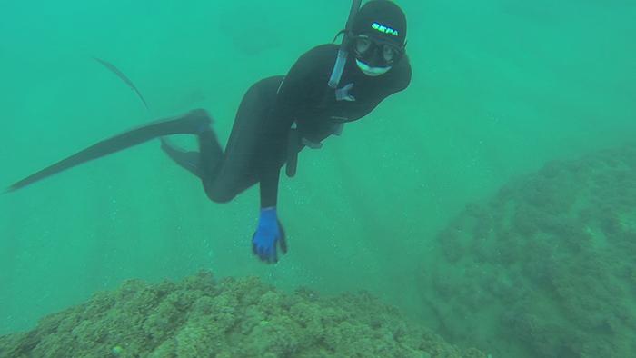 avidag freedive 5 26-1-2014