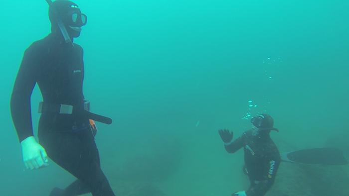 avidag freedive 6 26-1-2014