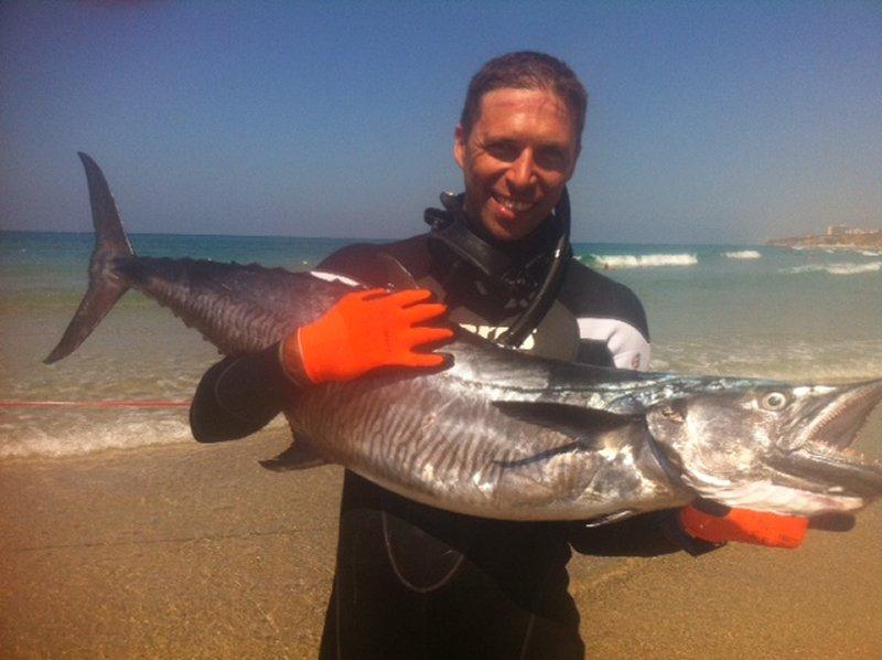 uri-binsted-20kg-mackerel