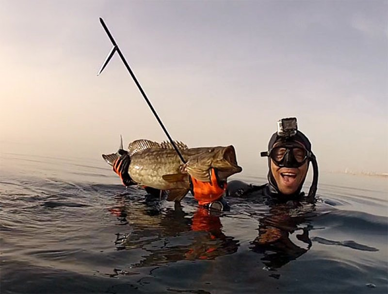 uri-binsted-deep-grouper