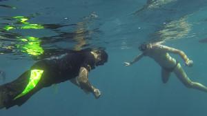 avidag freediving course l2-1