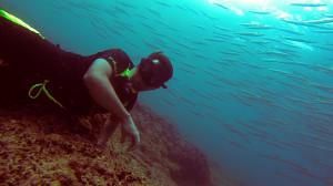avidag freediving course l2-15