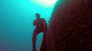 avidag freediving course l2-4