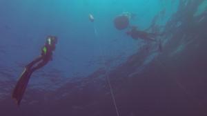 avidag freediving course l2-9