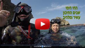 snorkelogy-avidag-israel