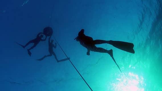 קורס צלילה חופשית בים התיכון עם אבידג