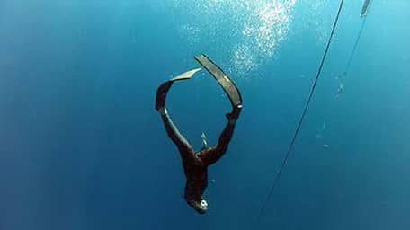 קורסי צלילה חופשית לכל הרמות באבידג