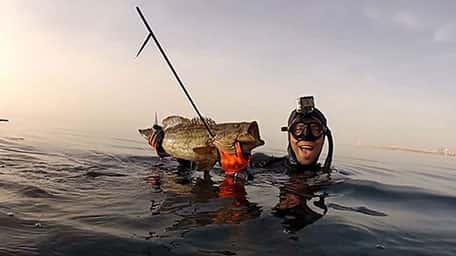 הכשרה לדיג בצלילה חופשית בים התיכון